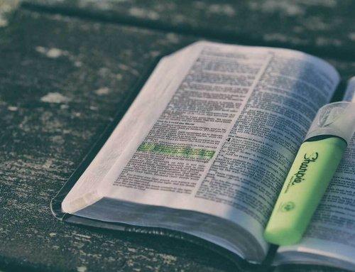 Biblenet neboli Biblický vyhledávač